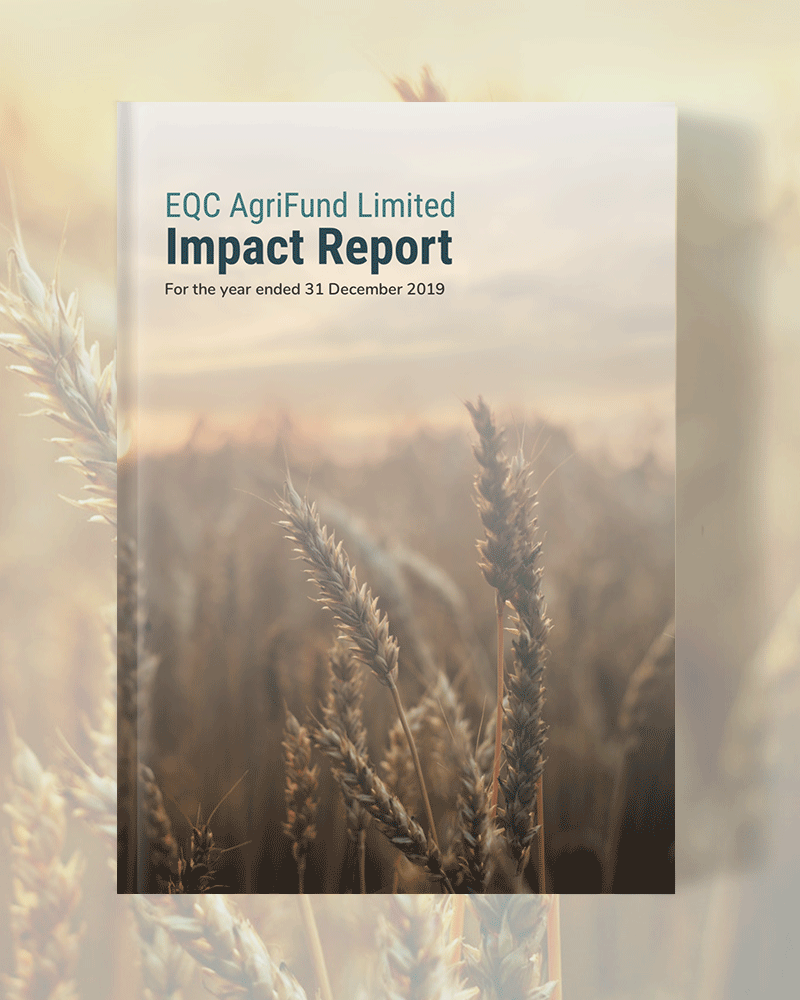 ECQ AgriFund Impact Report 2019 designed by Visually Thinking