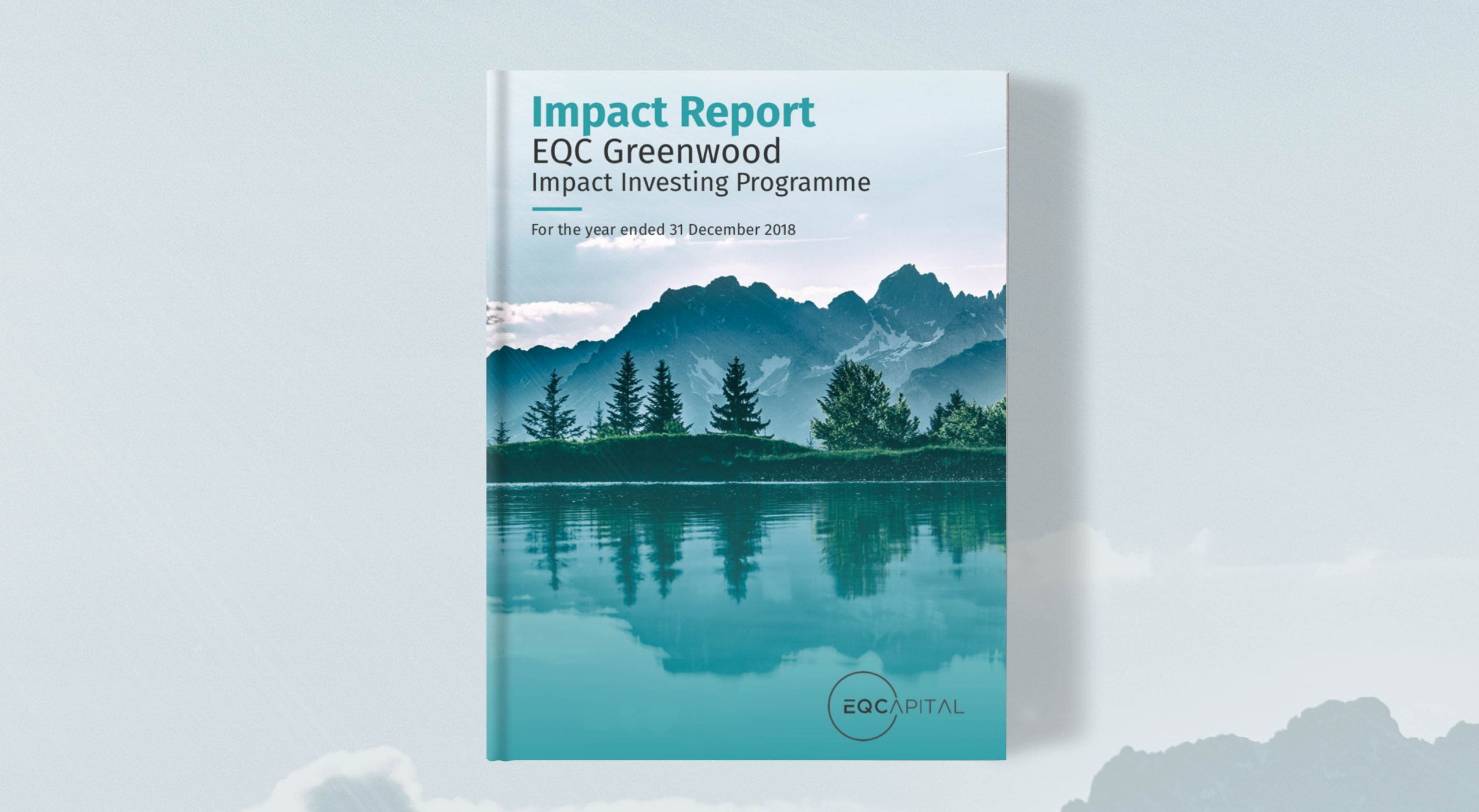 EQC report_front cover_visuallythinking